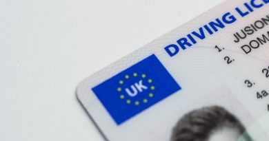 driving licence and car documents