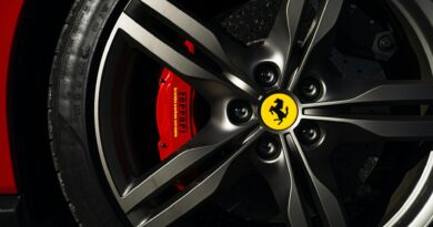 Brake pads in ferrari wheel